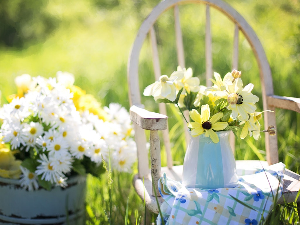 flowers on a chair outside in the summer