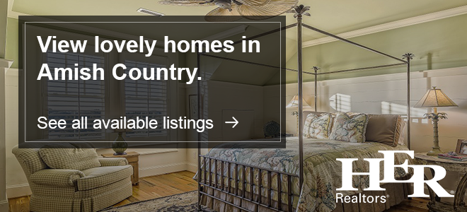 Homes for Sale in Amish Country