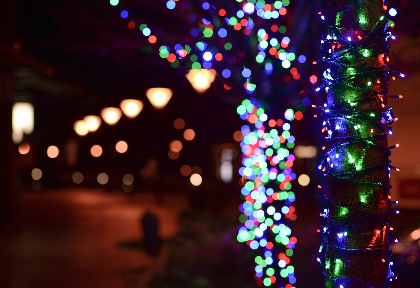 Beautiful Outdoor Holiday Lights