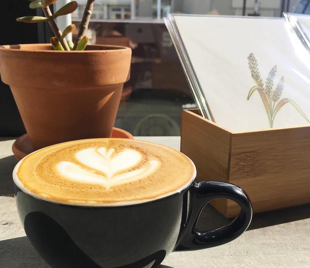 coffee & art at Redtree Art Gallery and Coffee Shop