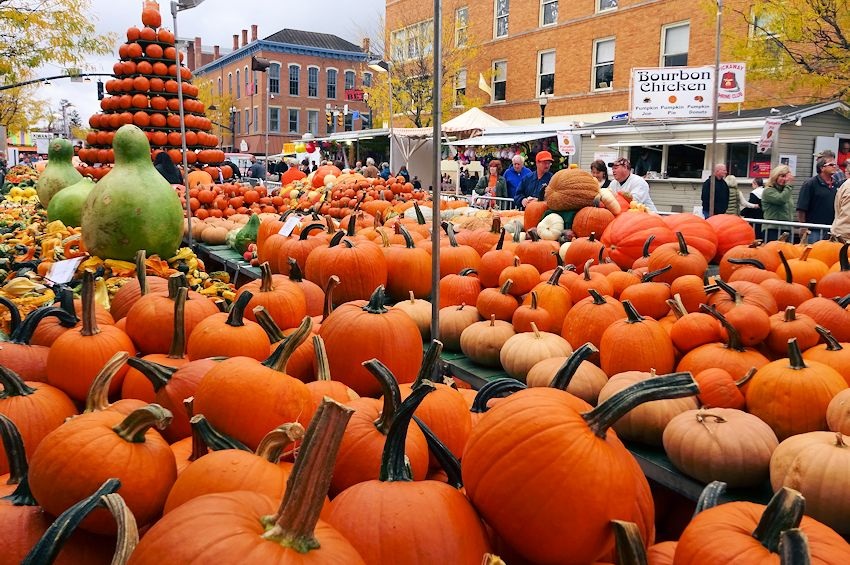 Huge pumpkin display at the annual Circleville Pumpkin Show