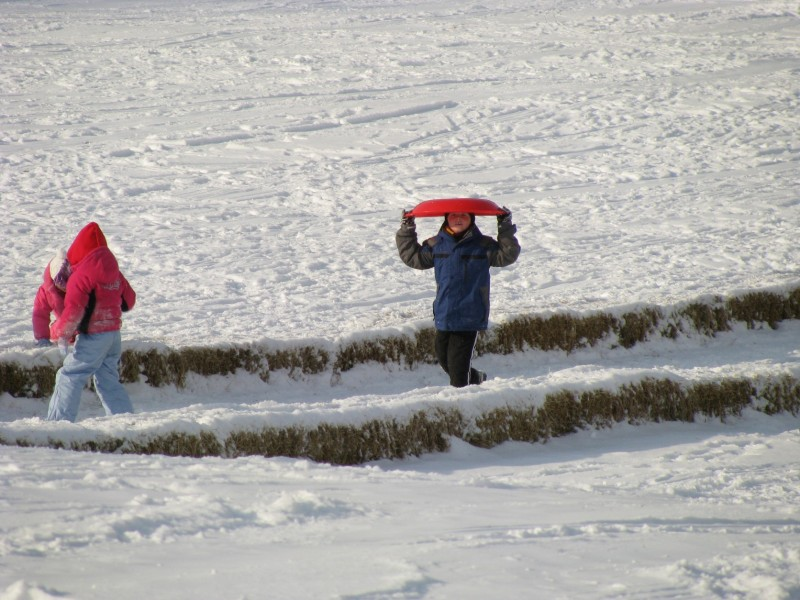 a group of children play on a sledding hill in dublin, ohio