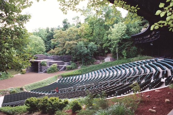 amphitheater seating in the middle of a forest
