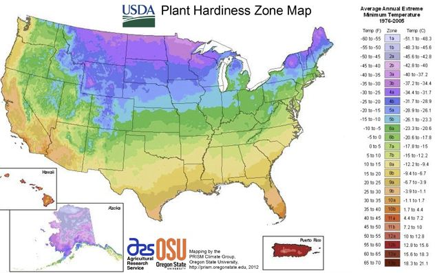 a map of USDA plant hardiness zones showing that the northern US experiences cold