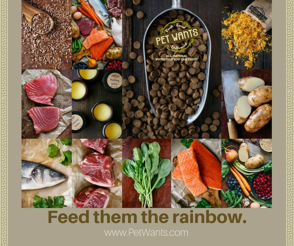 A composite images showing healthy pet food ingredients