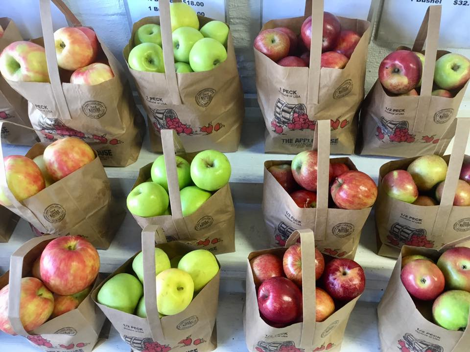 Shelves full of many kinds of apples bagged up and ready to go!