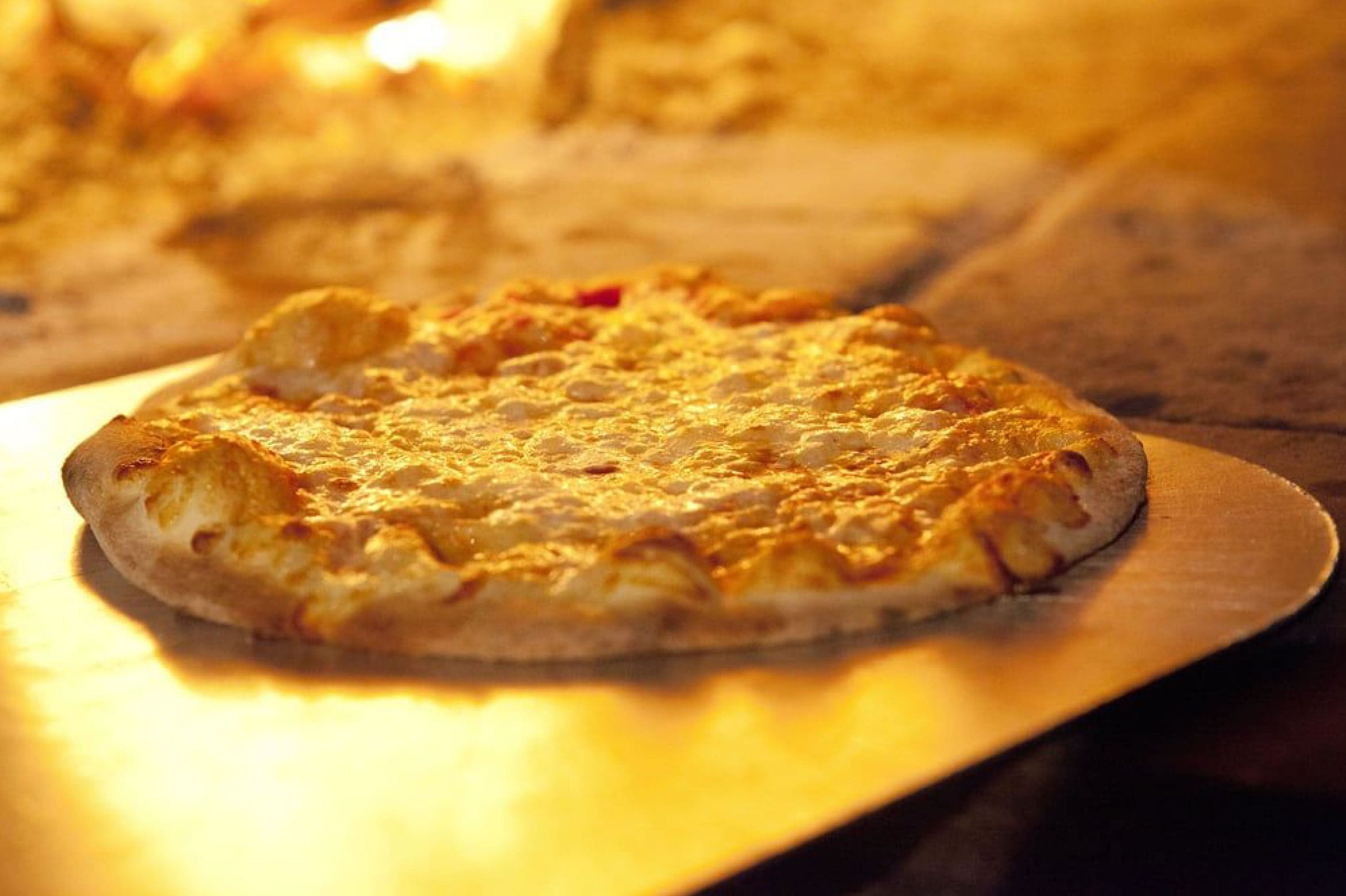 Cheese pizza on open oven