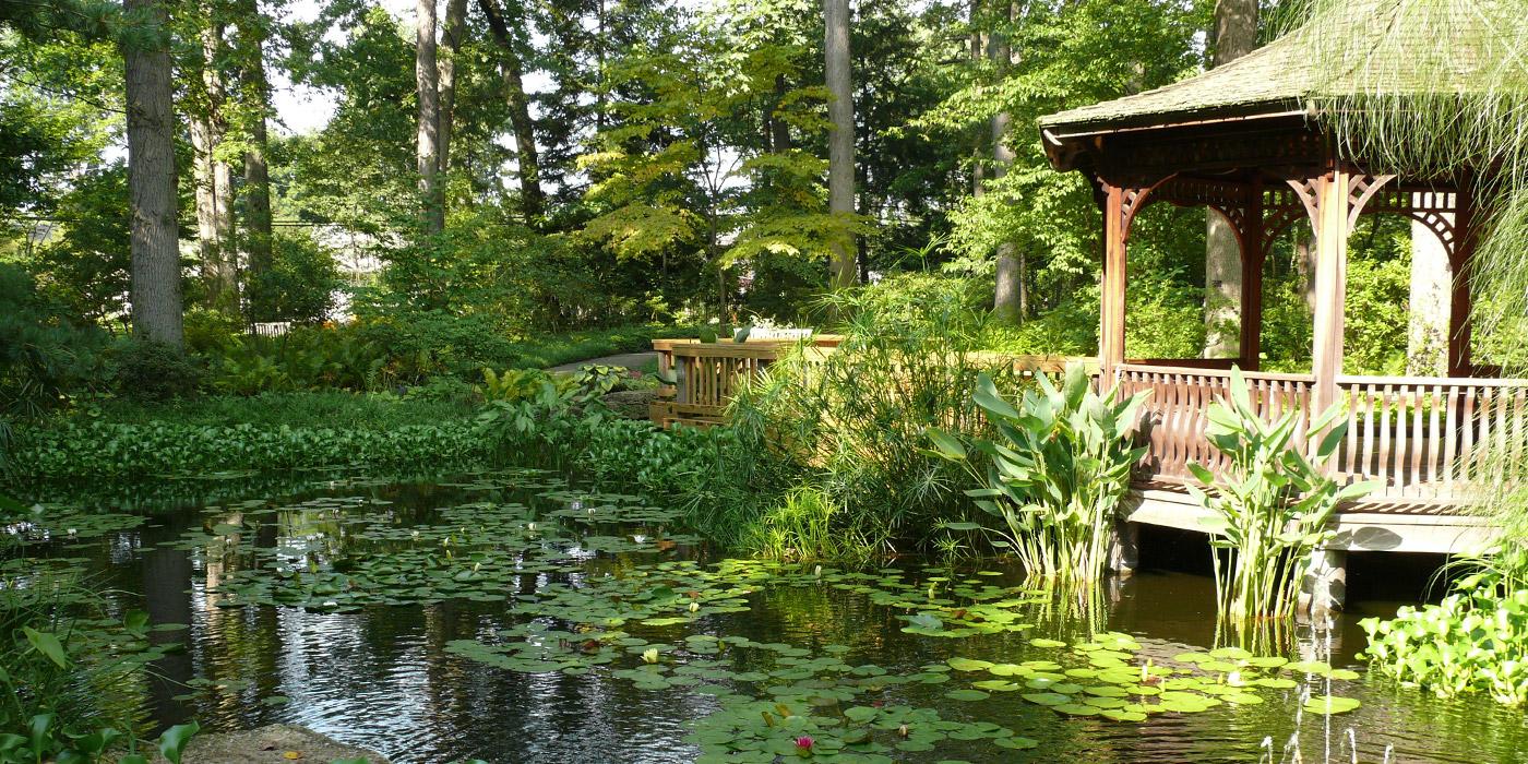 a lush green ohio botanical garden