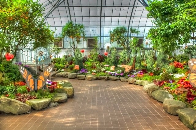 Elaborate butterfly garden with a path of lush greenery and butterfly sculptures.