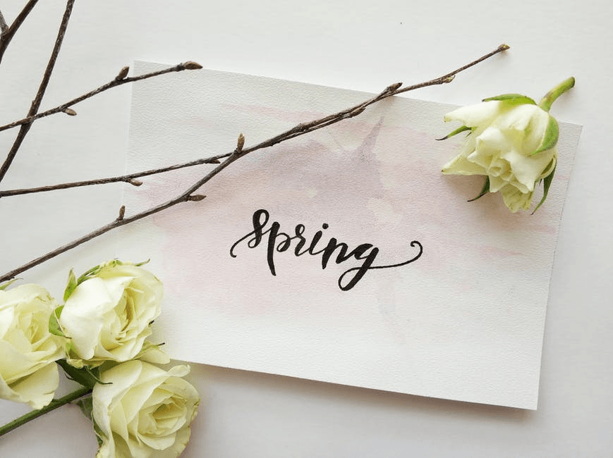 a note that says spring tucked under a branch with budding leaves on it