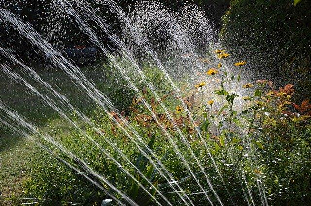 Sprinklers arch over a flower bush