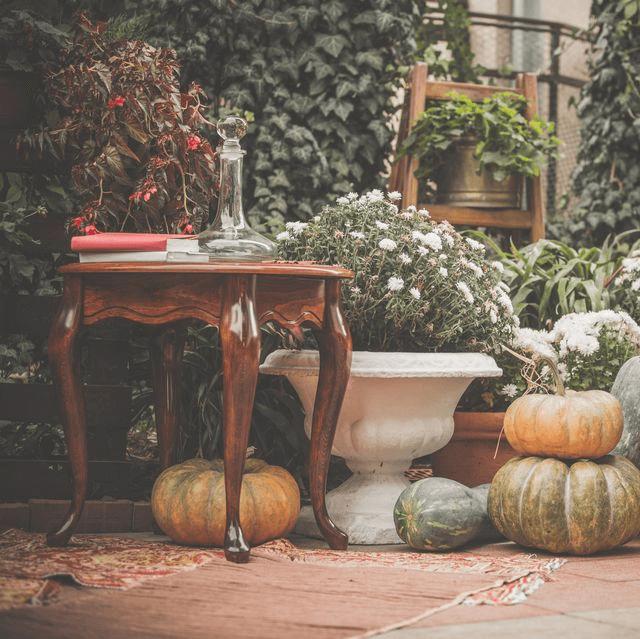 fall decor in a home