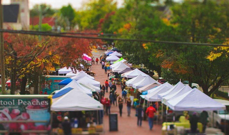 aerial view of the Thanksgiving Farmers Market
