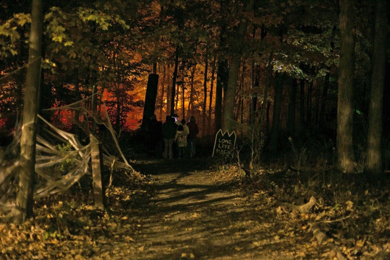 UACA Golden Bear Scare Image