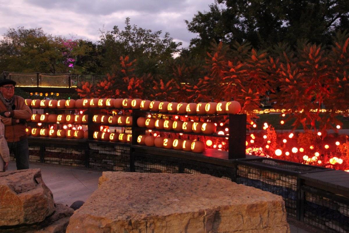 Hundreds of carved glowing pumpkins