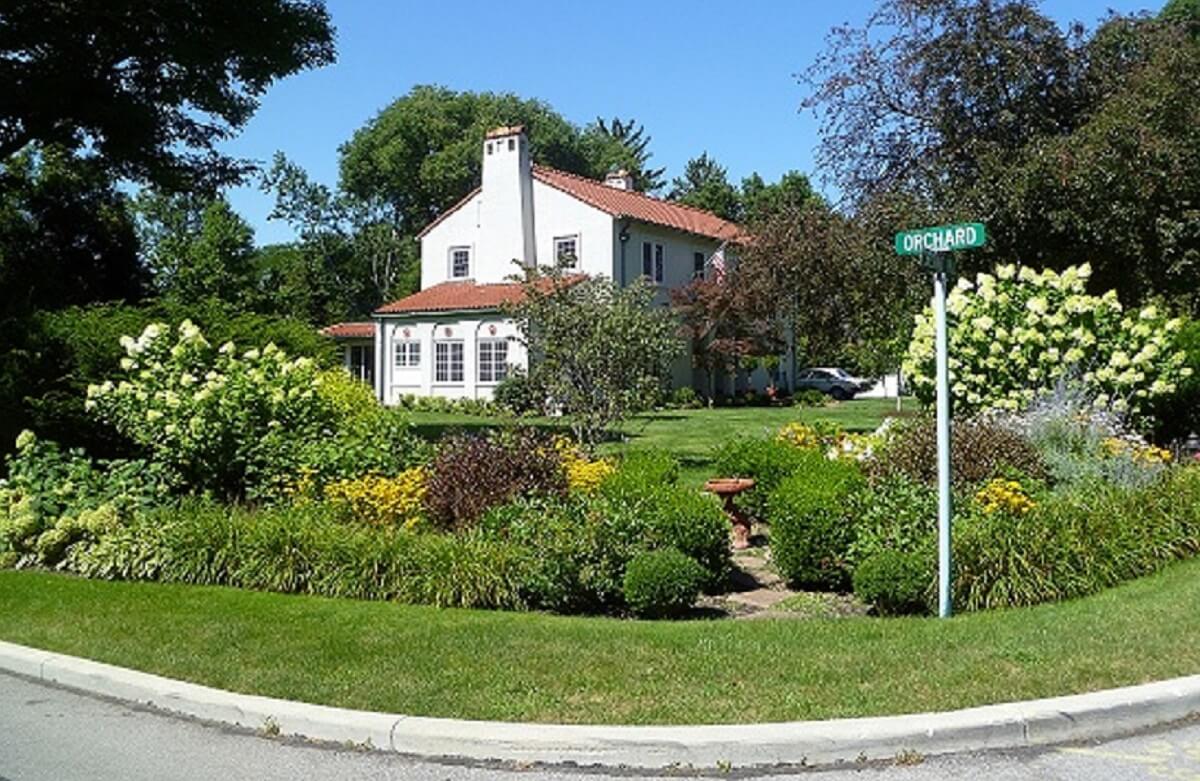 shrubs and house