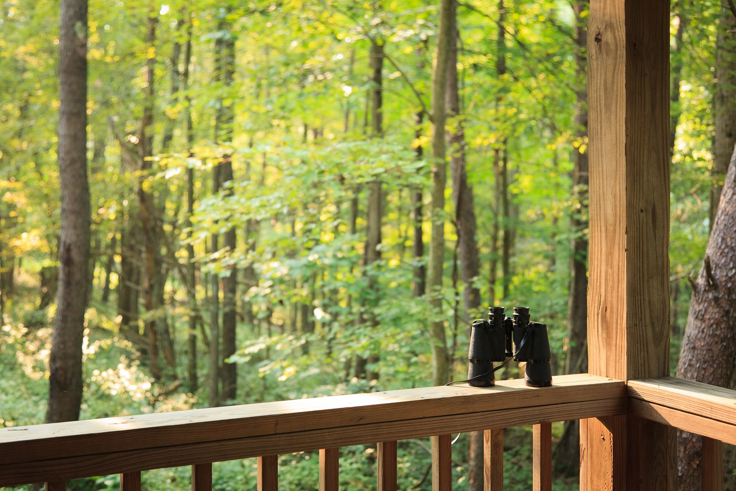 Logan is full of beautiful places to be in touch with nature. Image Courtesy of Inn at Cedar,