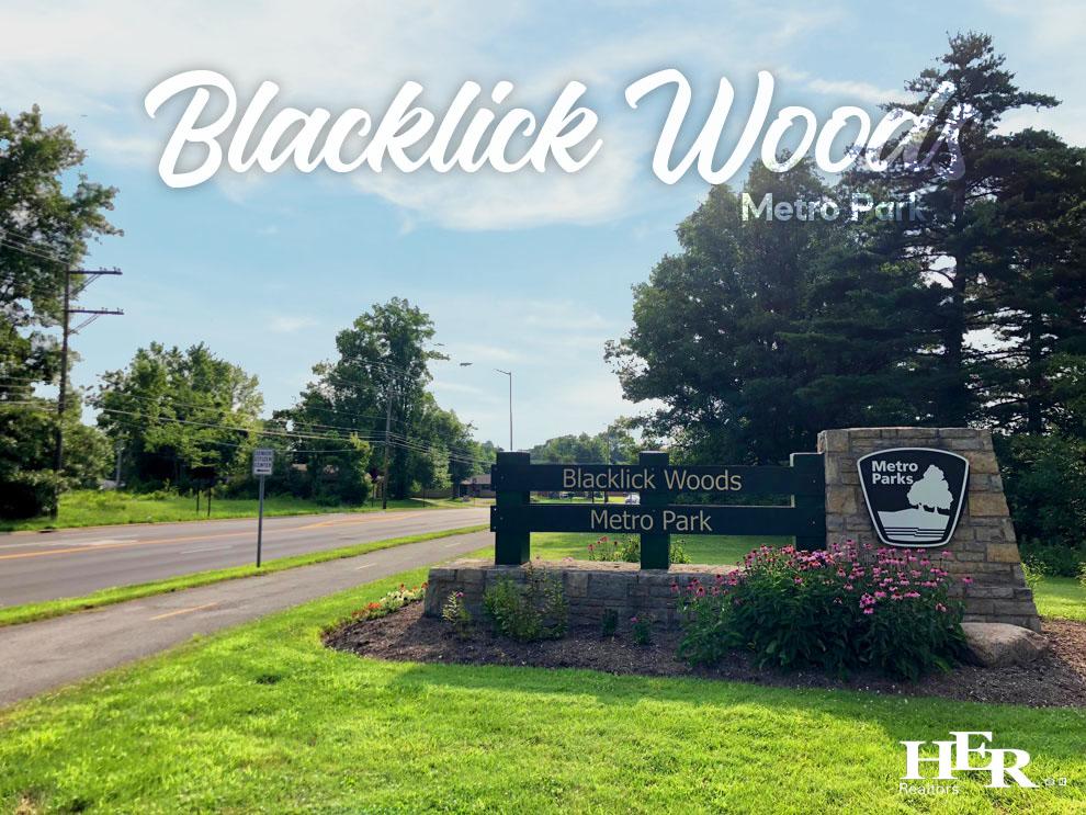 Blacklick Woods