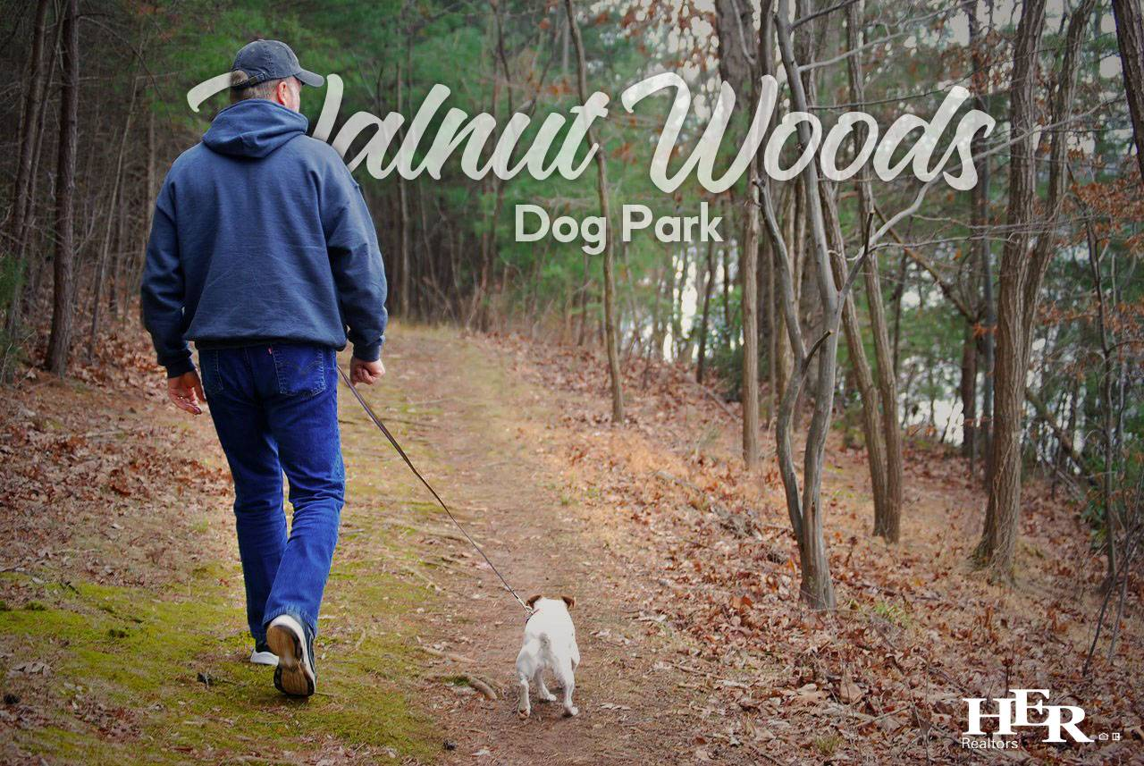 A man with his dog walking at Walnut Woods Dog Park