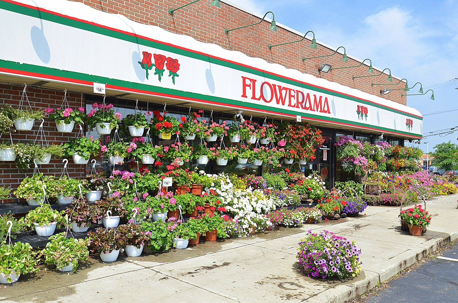 A shot of the outside of Flowerama's store. There are dozens of hanging flowers in front of the store.