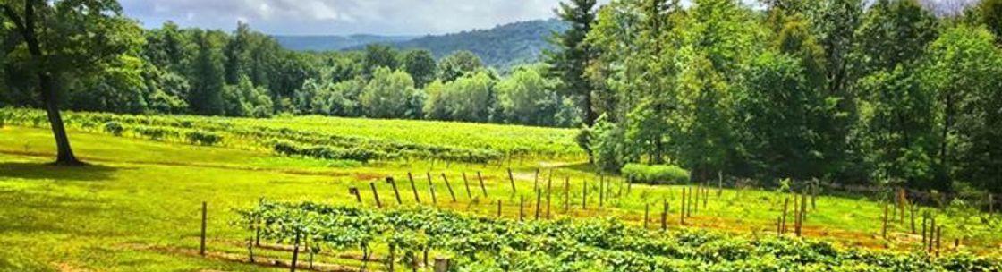 Image result for french ridge vineyards