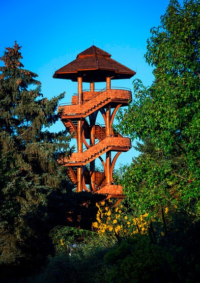 the Observation Tree Tower