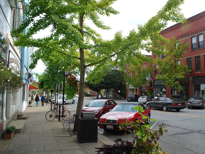 pretty Oberlin street with trees and pedestrians