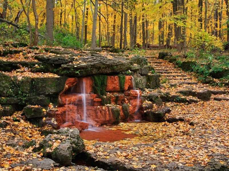 small waterfall surrounded by orange leaves in forest