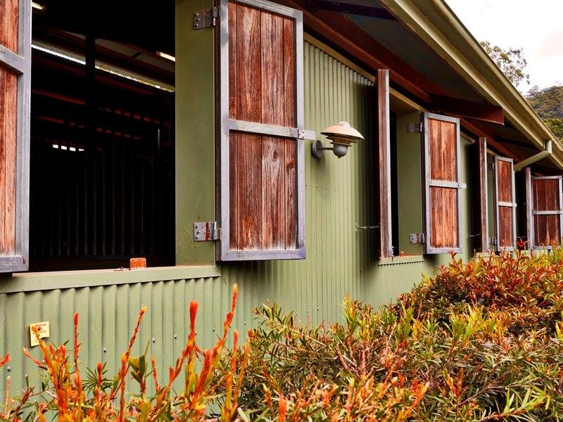 A green farmhouse with reddish wood barn door shutters.