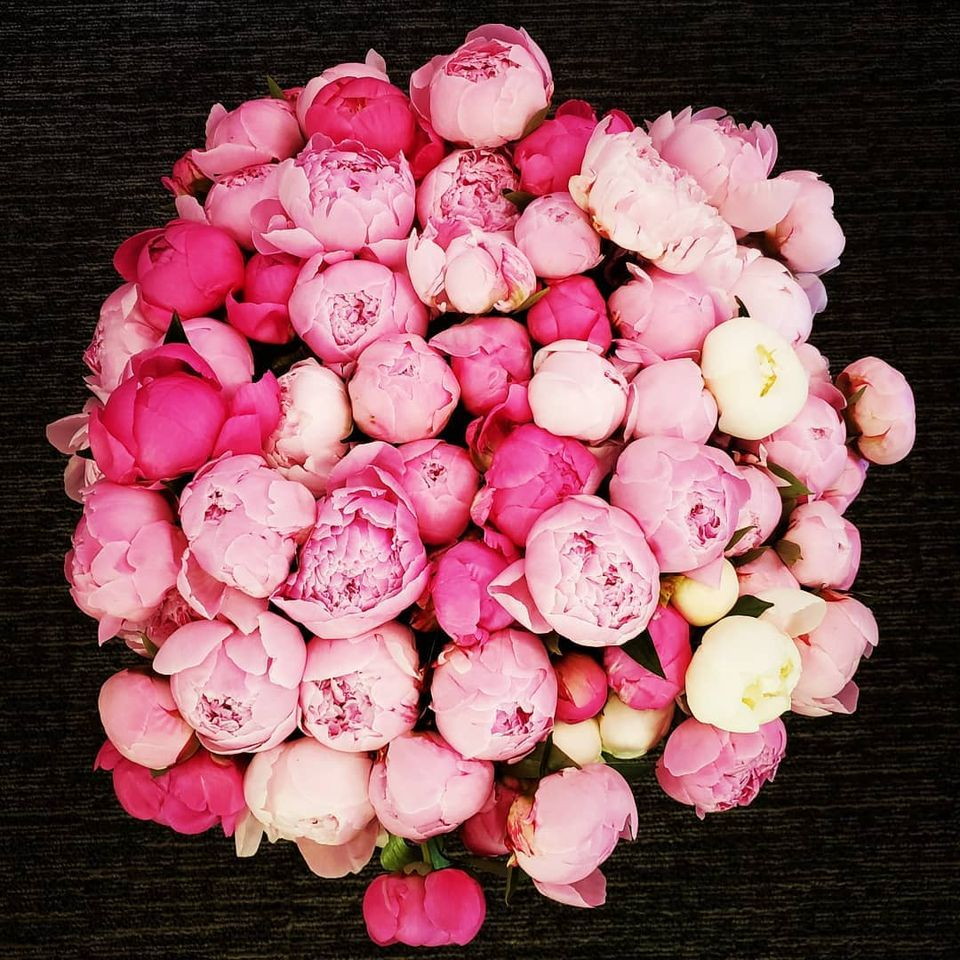 An image of a multitude of pink colored flowers grown at Westerville Florist.