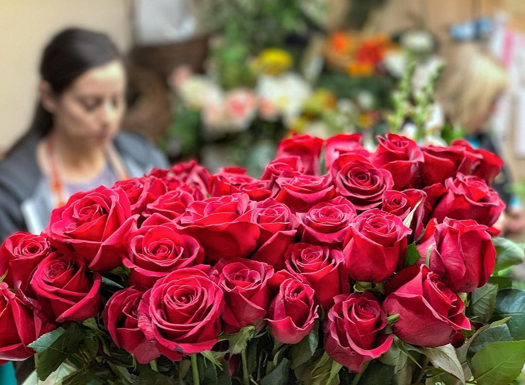 An image of a traditional batch of roses grown at Talbott's Flowers.f