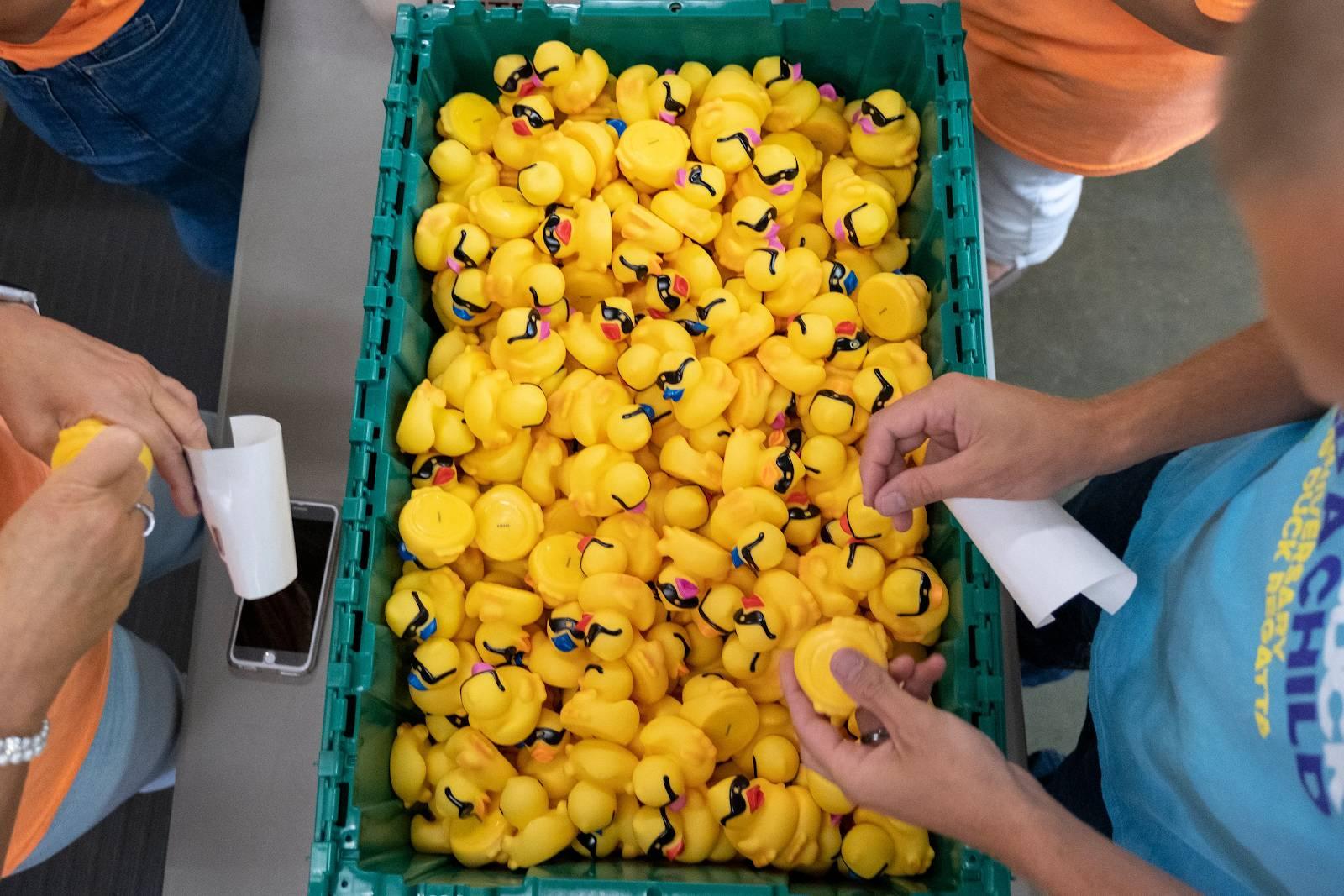 Buy a duck