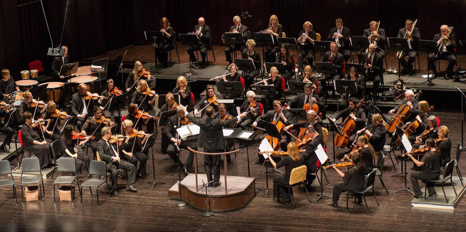 The Springfield Symphony Orchestra