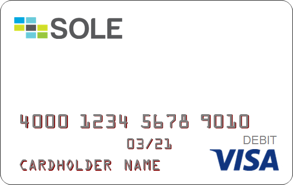 get a sole paycard payroll card service via wisewage the direct deposit payroll experts - Visa Payroll Card