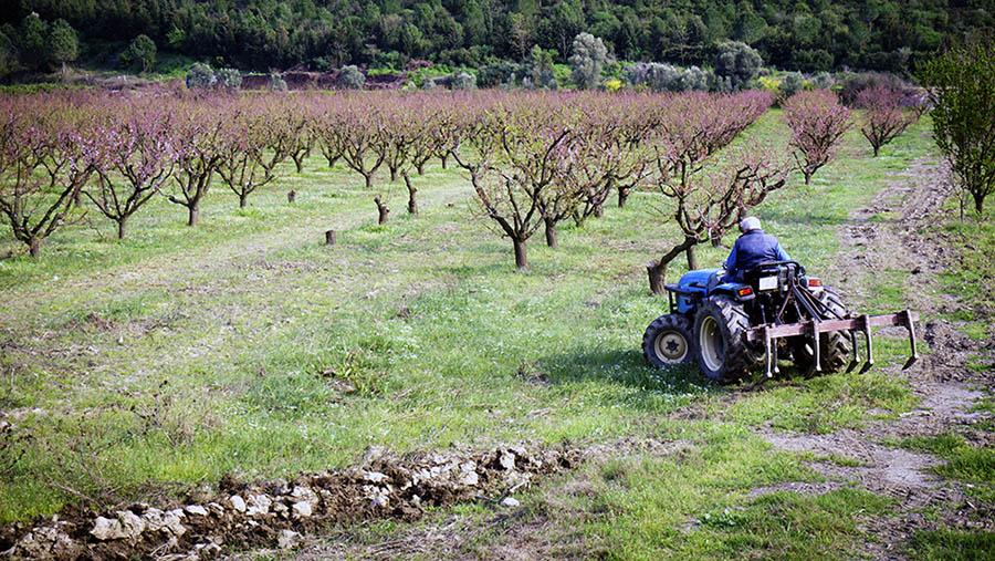 h2a farmworker payroll