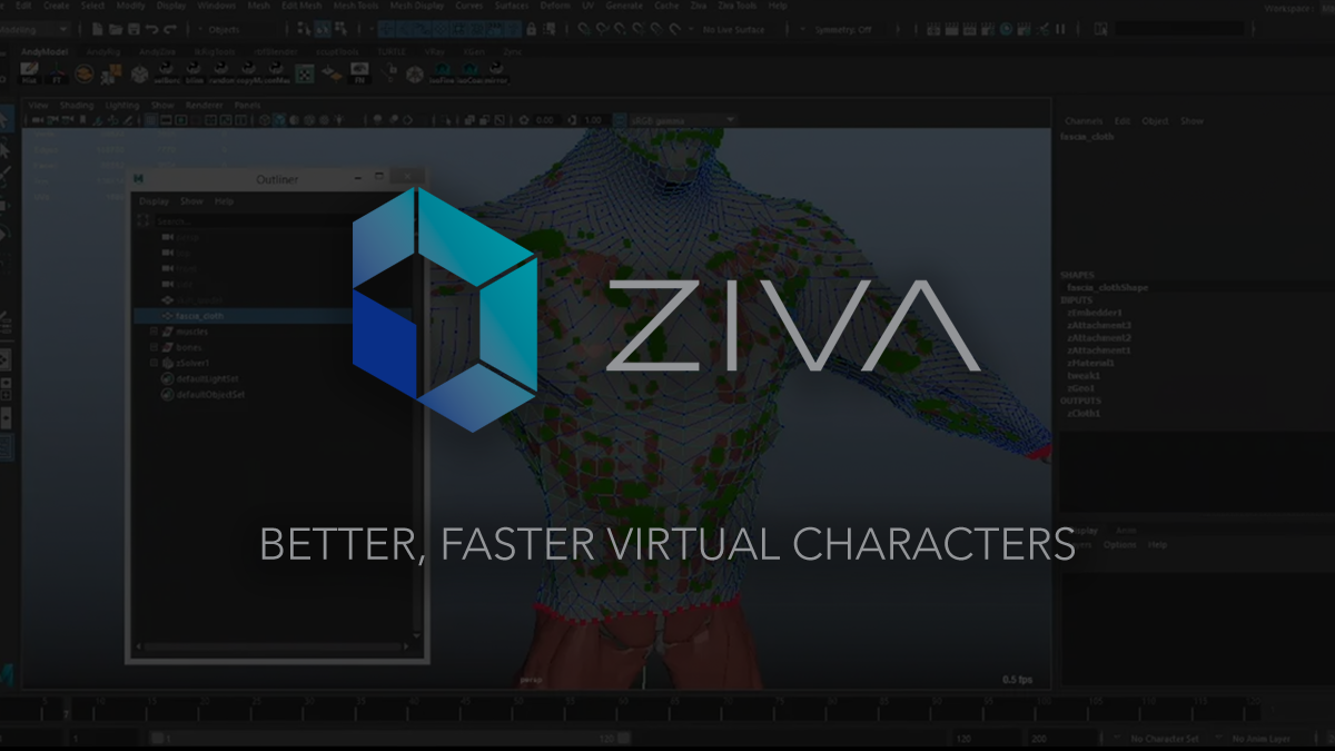 Ziva Dynamics | Home