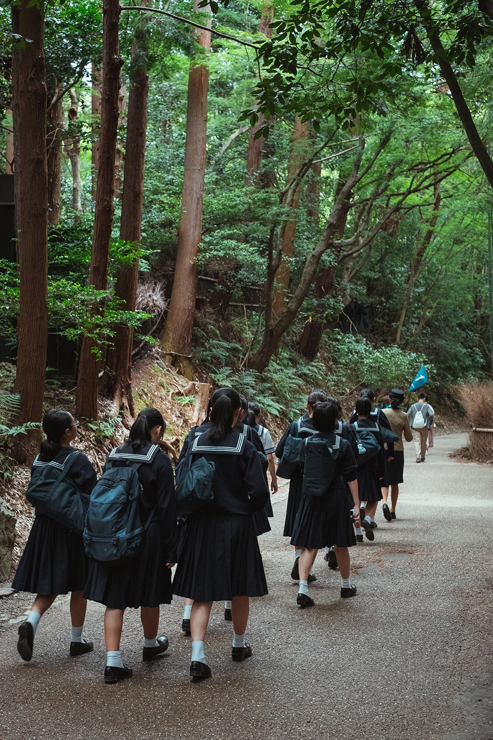 Japanese students walking through a forest