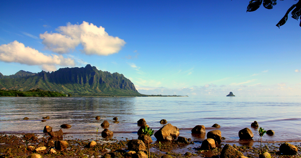 Hawaii has eight main islands, Big Island being twice the size of the different consolidated islands. Huge islands are generally less populated than other places of visit.