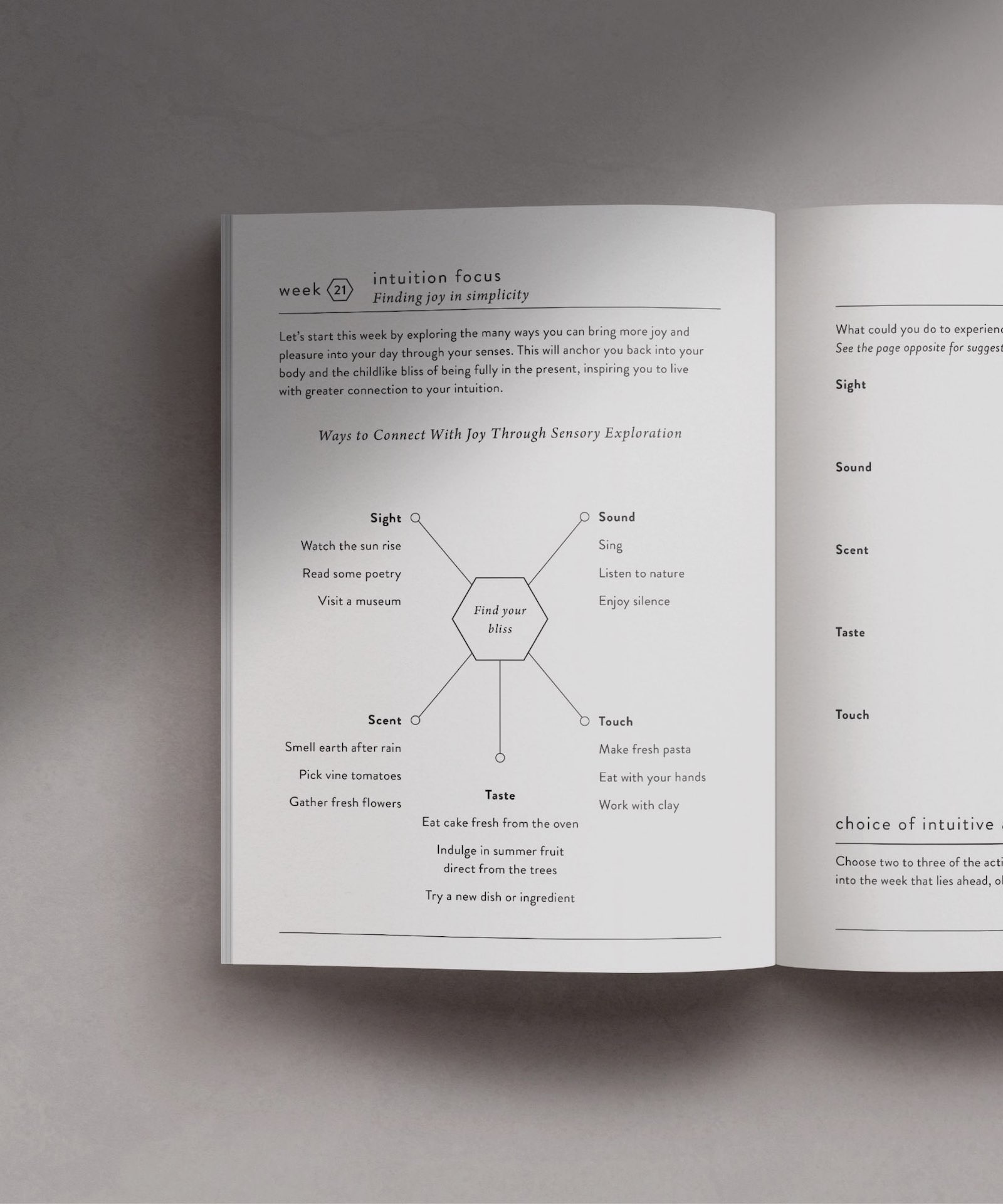 Intuition Journal Jo Chunyan