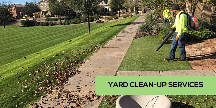 Yard Clean-Up Services in Gilbert, Chandler, and Mesa Arizona by Little John's Lawns