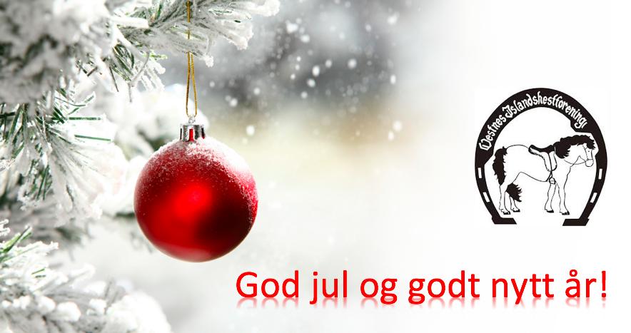 God jul og godt nyttår!