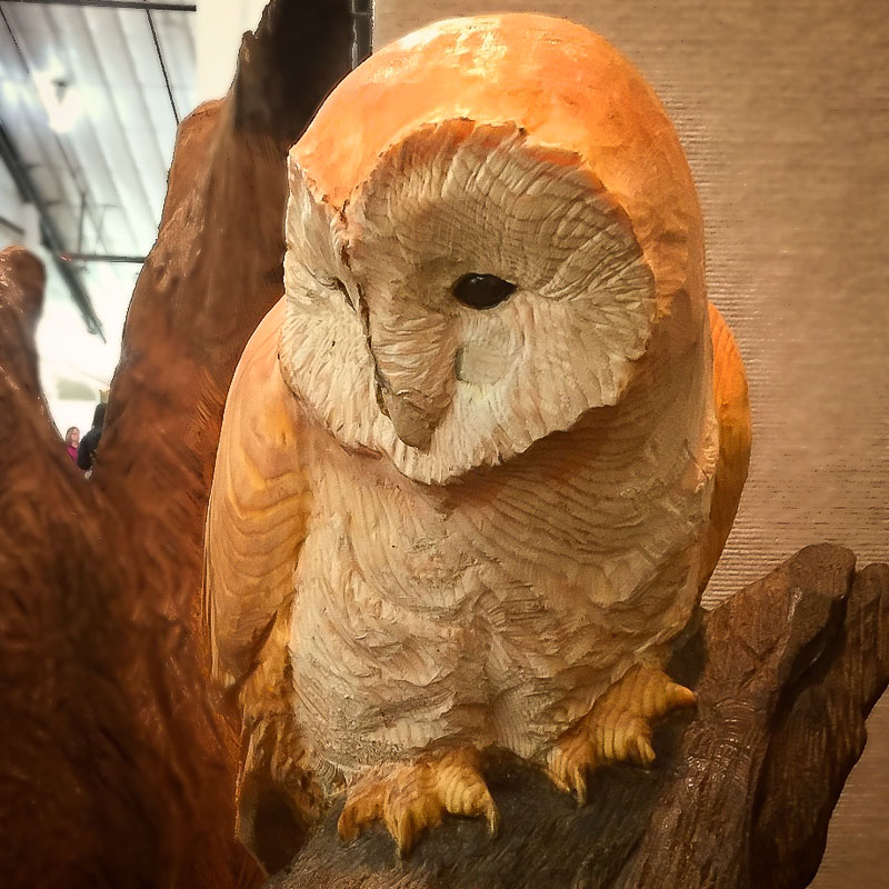 wood carved perched barn owl sculpture