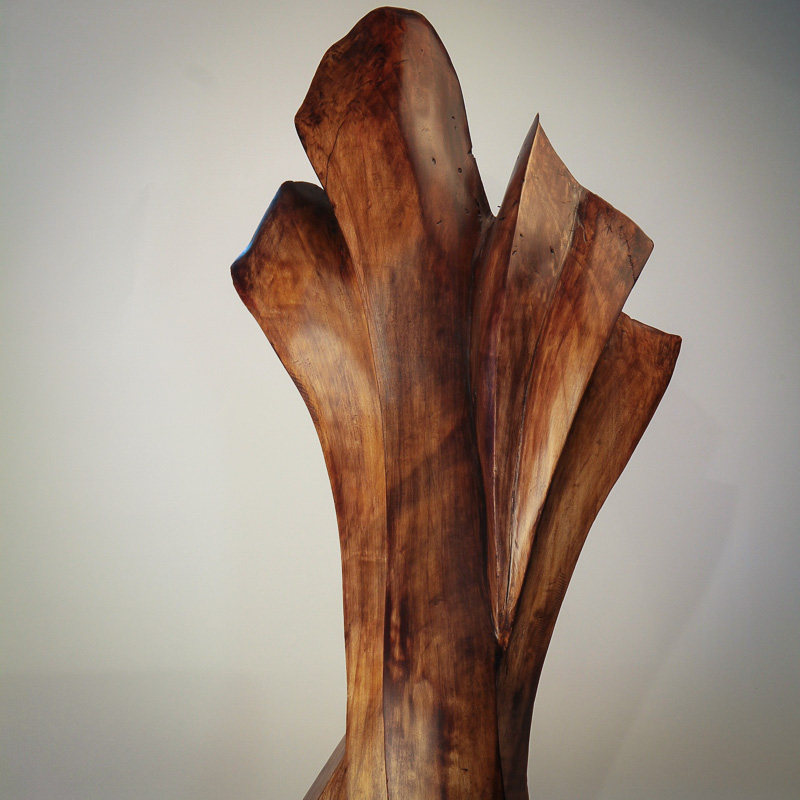 Maple Wood abstract Sculpture