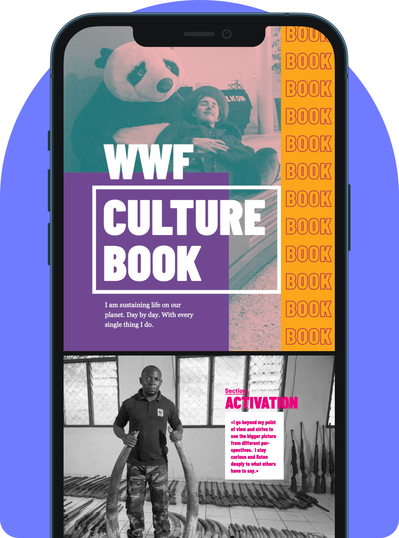 WWF Culture Case