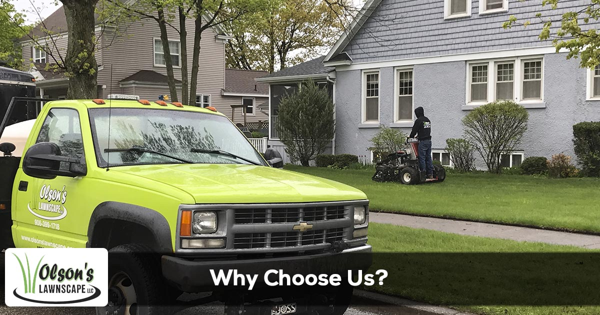 Why choose Olson's Lawnscape for lawn care services in Michigan?