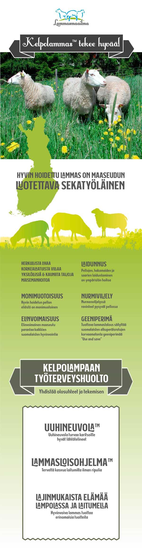 Kelpolammas tekee hyvää-infograafi lampureille ja kuluttajille