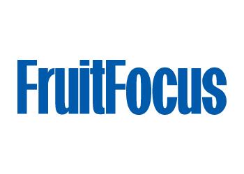 Fruit Focus
