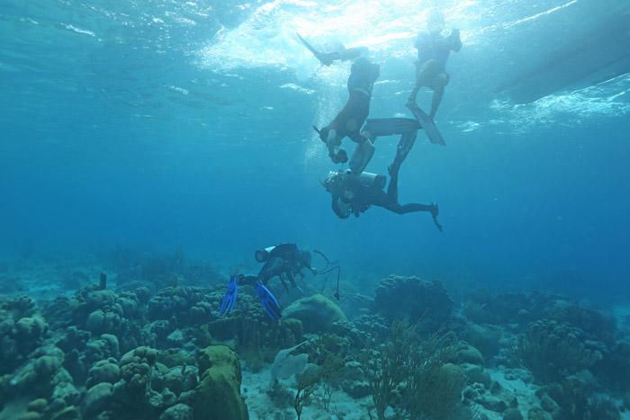 thomas-decarlo-remote-coral-reef