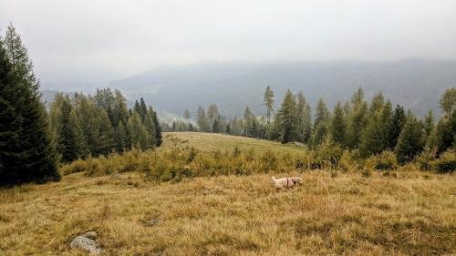 Grazer Hütte - Krakau