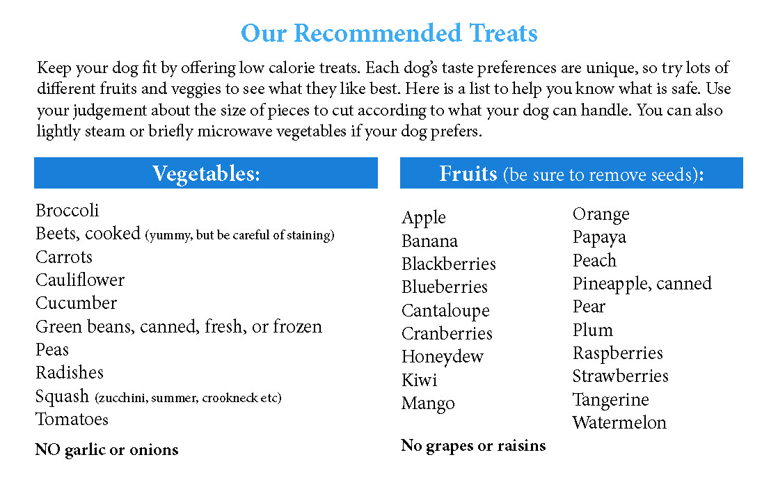 A list of fruits and vegetables that make good, low calorie treats for dogs